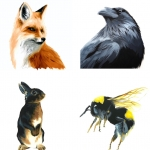 Art For Animals
