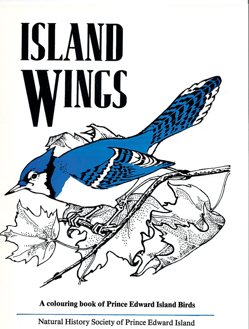 Book release: Island Wings